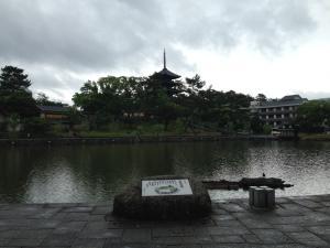 sarusawa0606_convert_20140606114601.jpg
