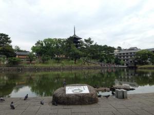 sarusawa0611_convert_20140611110542.jpg