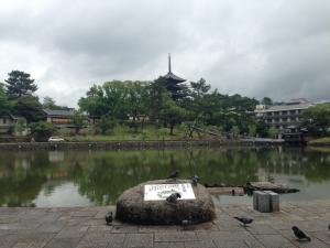 sarusawa0612_convert_20140612113246.jpg