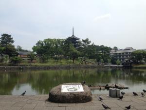 sarusawa0616_convert_20140616111734.jpg