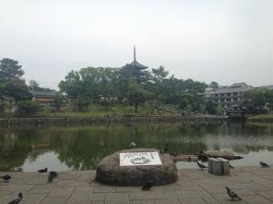 sarusawa0617_convert_20140617115307.jpg