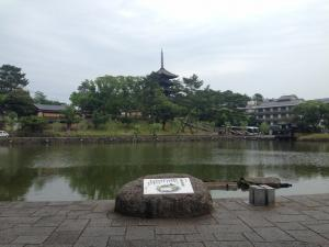 sarusawa0618_convert_20140618114912.jpg