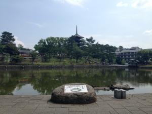 sarusawa0624_convert_20140624105021.jpg