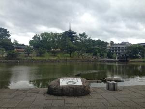 sarusawa0628_convert_20140628111537.jpg