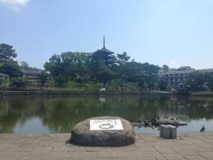 sarusawa0701_convert_20140701111354.jpg