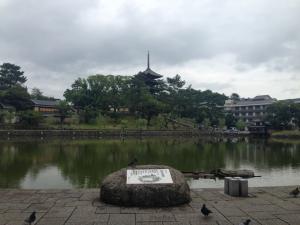 sarusawa0707_convert_20140707114104.jpg
