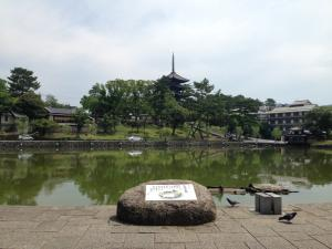 sarusawa0712_convert_20140712114537.jpg