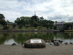 sarusawa0801_convert_20140801160846.jpg