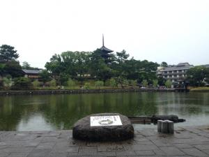 sarusawa0802_convert_20140802124231.jpg