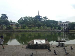 sarusawa0813_convert_20140813112507.jpg