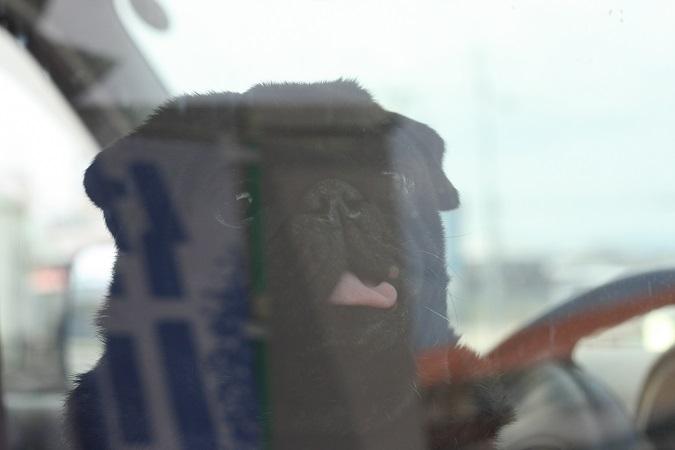 715sagawa.jpg
