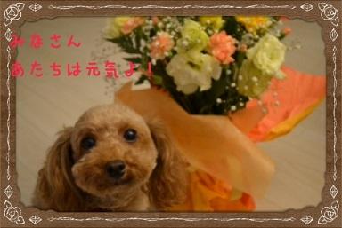 image5_20140326020033fe6.jpg