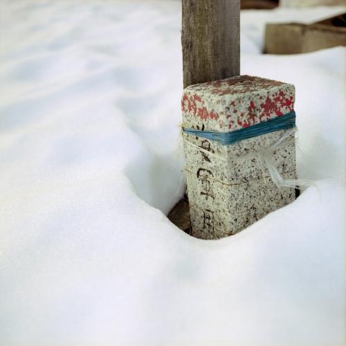 img584-のコピー