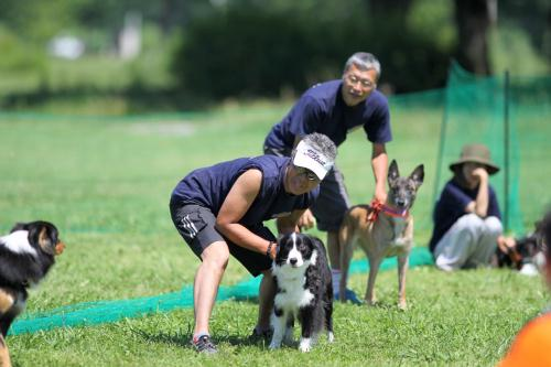Flyball_0421 小