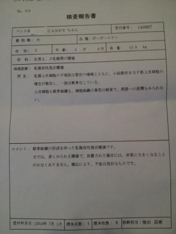 20140705_102953.jpg