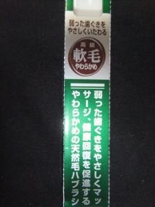 DSCF7190 (225x300)