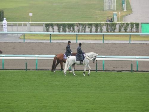 札幌競馬場GO20140726 (13)_R
