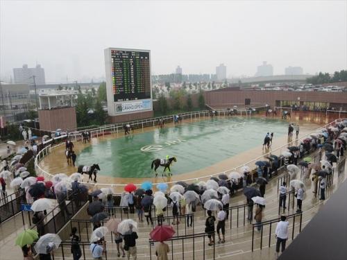 札幌競馬場GO20140726 (24)_R