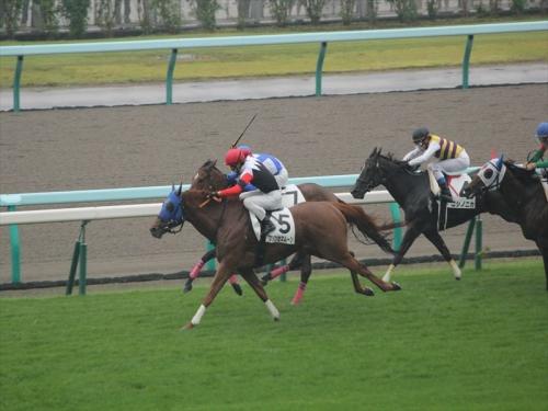 札幌競馬場GO20140726 (6)_R