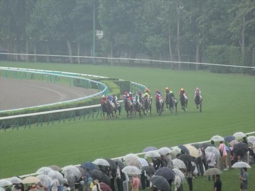 札幌競馬場GO20140726 (8)_R