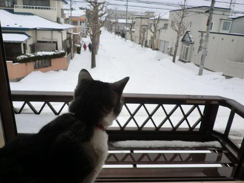 2014-2-22みちる②