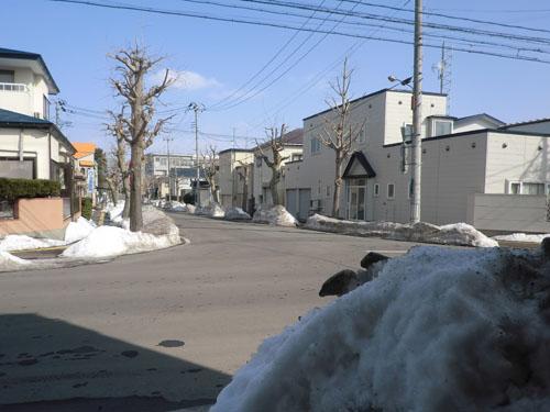 2014-2-28雪どけ②