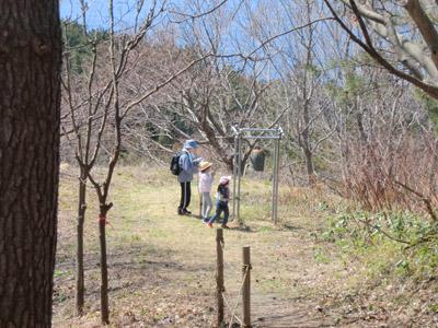 2014-4-13八森御所の台⑤