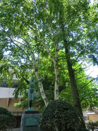 2014-6-2市民体育館前の自然⑥