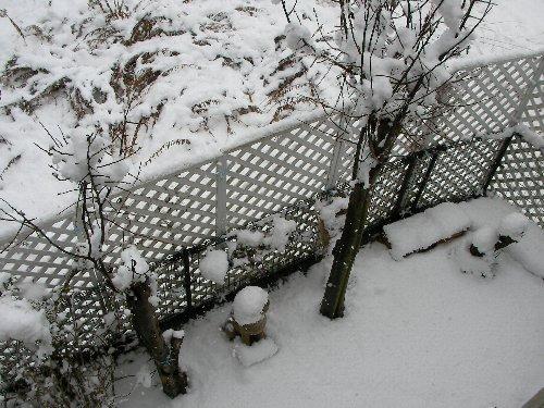 20140214・12:20庭の雪