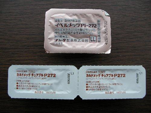 フィラリア予防薬②