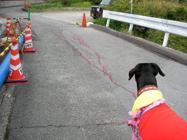 20140421道路崩壊現場⑪