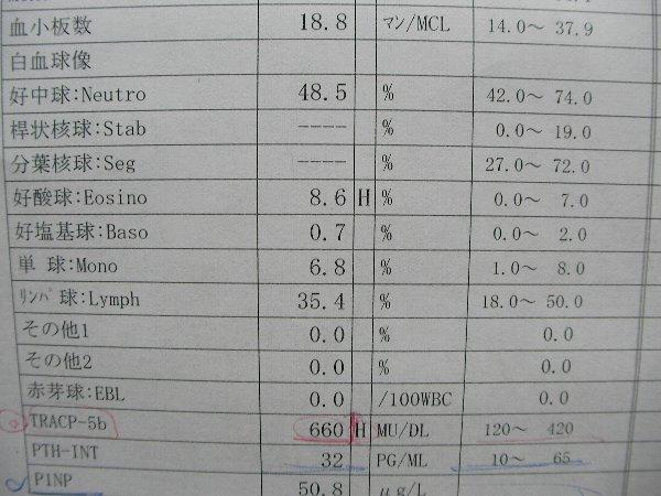 20140515整形外科血液検査④
