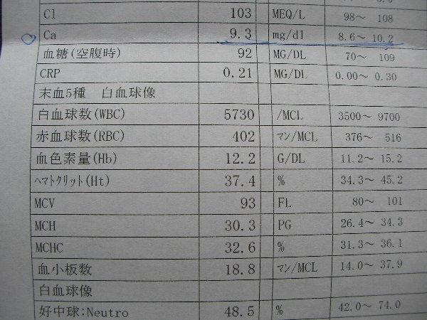 20140515整形外科血液検査③