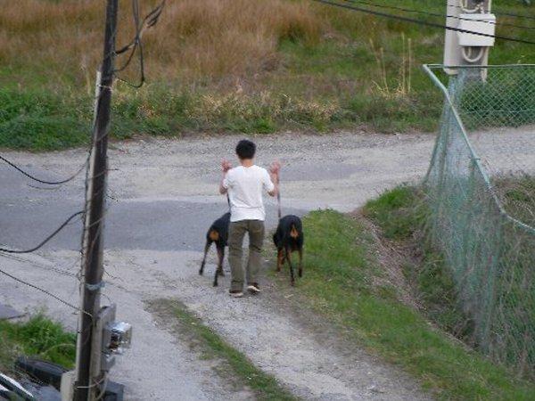 201404151744犬使い①