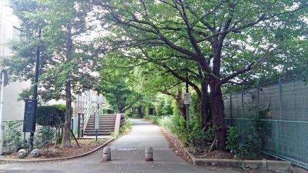 博多駅方向