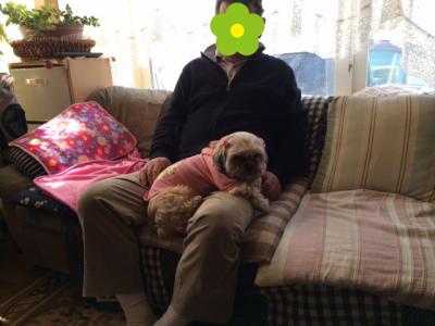 チャチャとお父ちゃん