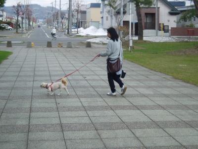 もこ公園にて散歩中
