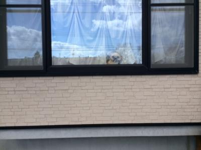 もんち出窓で1