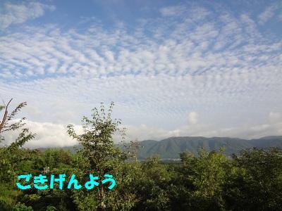 DSC01720a.jpg