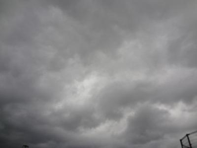 台風のあと・・