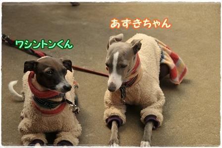 アズワシ紹介