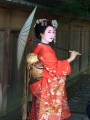 彩撮影舞妓日傘