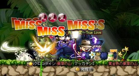 Maple11999a.jpg