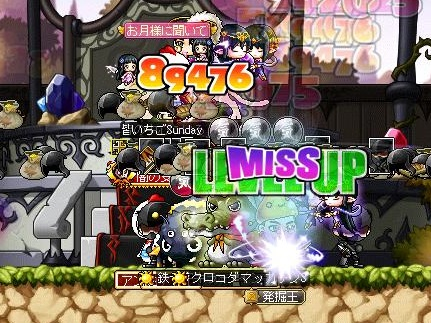 Maple12074a.jpg