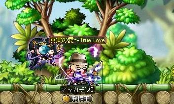 Maple12112a.jpg