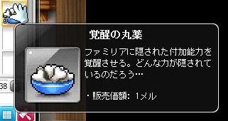 Maple12127a.jpg