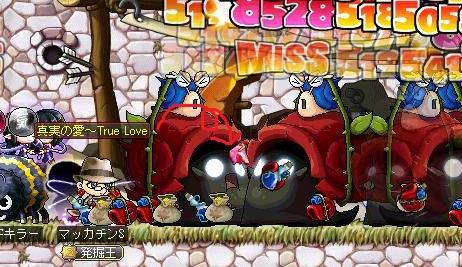 Maple12162a.jpg