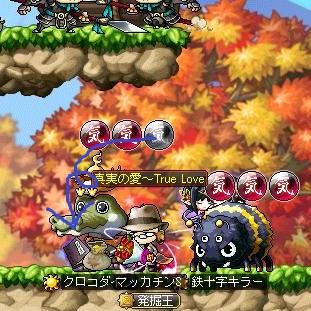 Maple12164a.jpg