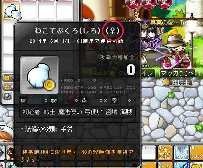Maple12184a.jpg