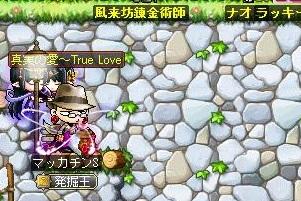 Maple12246a.jpg